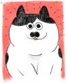 Cat01 b