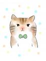 Cat03 b